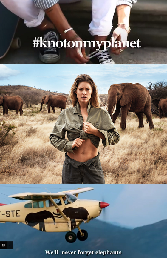 Elephant Crisis Fund and Doutzen Kroes Launch #KnotOnMyPlanet